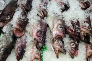 Pescados y Mariscos Arias Cal
