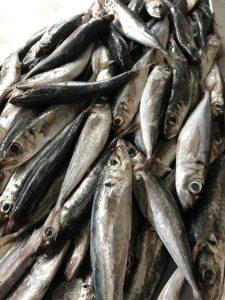 Sardinas Pescados Arias Cal